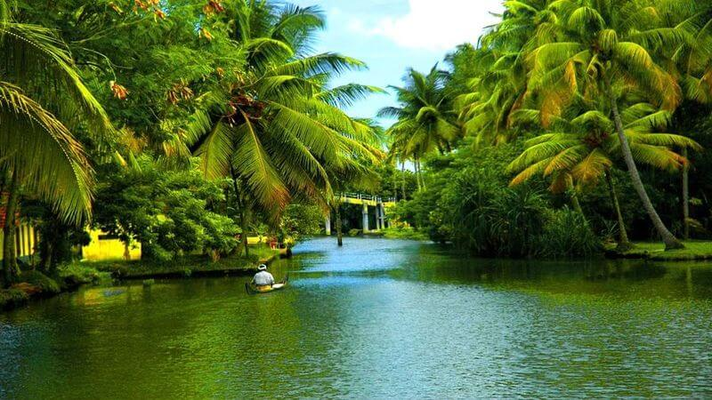 media_gallery-2018-11-28-10-Kerala_Tour_Package123_d81cc388577b8e6acb772e5215aff236.jpg