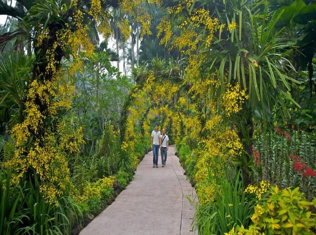 13 best botanical gardens in the world   triphobo travel blog
