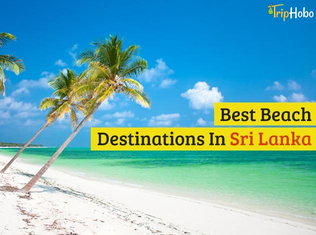 Family Spring Break Vacation Deals And Packages 2015