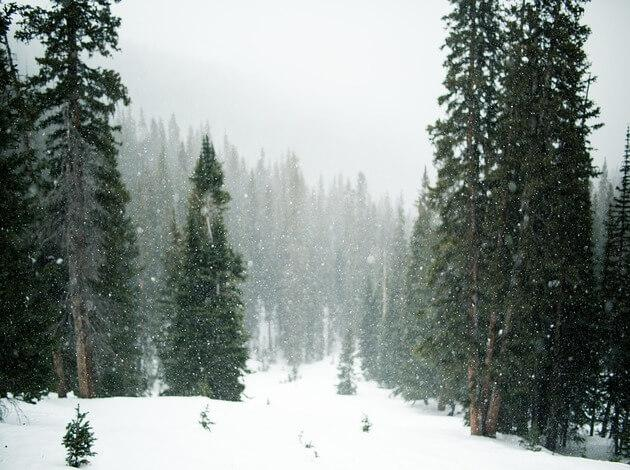 Manali - For a Snowy Christmas Celebration in India