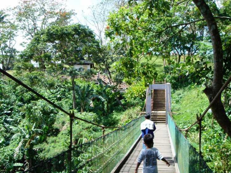 Nature Trail Tagaytay - Picnic Grove