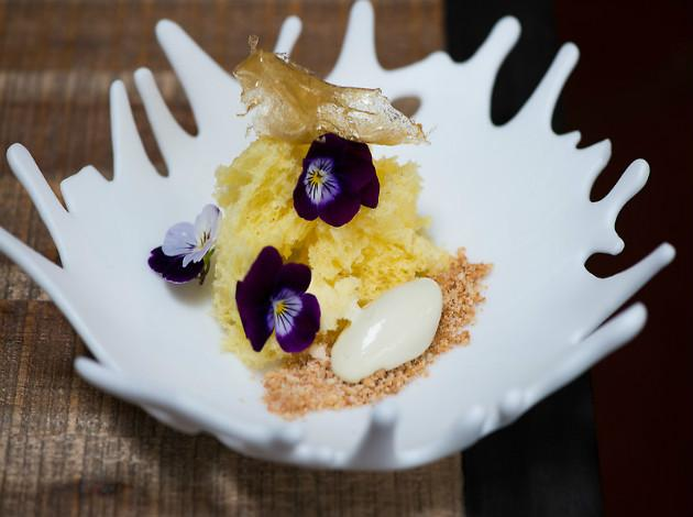 Rogue 24, best molecular cuisine in Washington D.C.