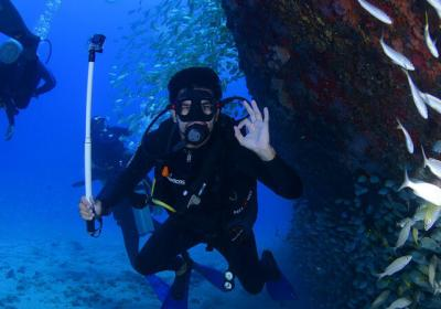 16 Best Dive Sites In The World
