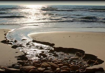 The Most Beautiful Beaches Around Boston For A Rejuvenating Break!