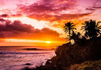 Best Hawaiian Islands For Honeymoon