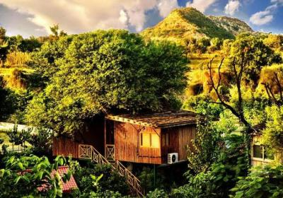 Best Tree House Resorts In India To Unwind This Summer