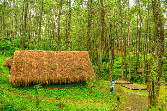 naturla place in Bandung - Grafika Cikole - Image