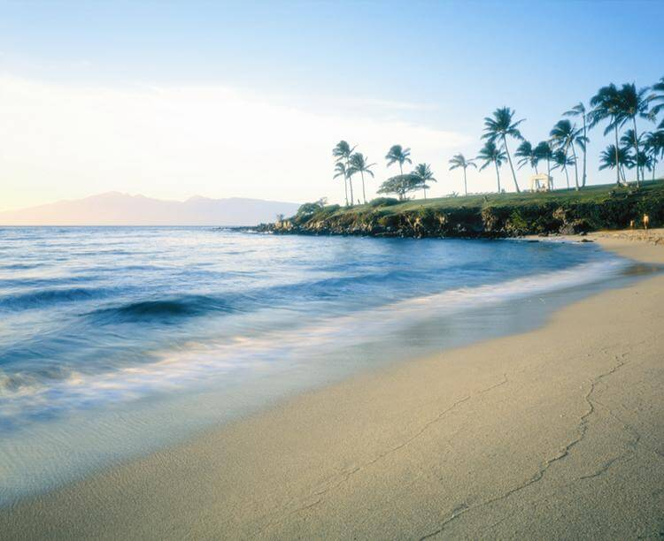 umlimited adventure sports in kapalua beach - image