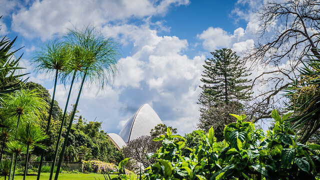 Visit the botanic gardens of Australia - Image