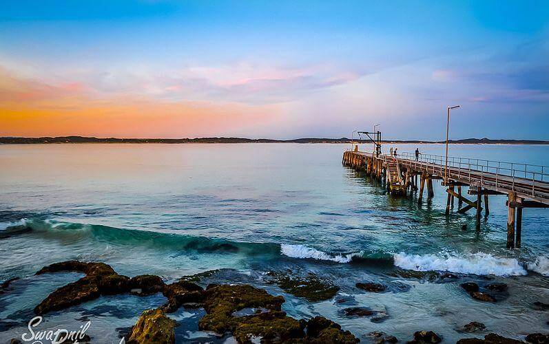 Take a day trip to the Kangaroo Island - Image