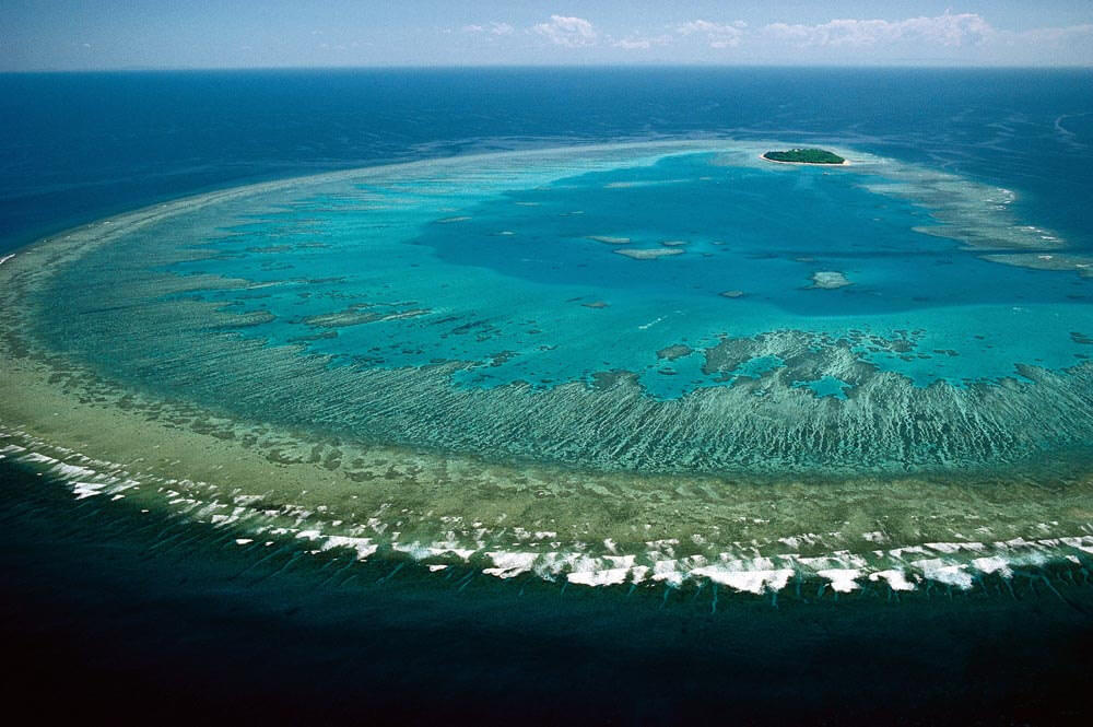 Dive deep in the Great Barrier Reef - Image