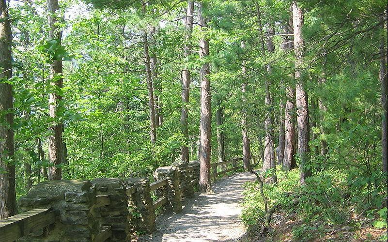Turkey Path trail hiking, Leonard Harrison State Park