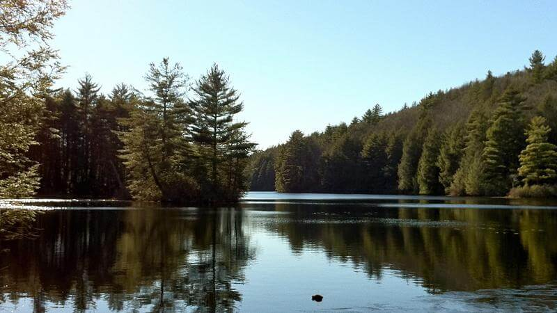 Bigelow Hollow Pond Trail