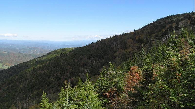 Weathersfield Trail