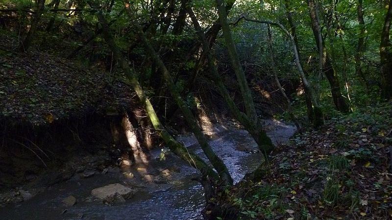 Stowe Pinnacle Trail