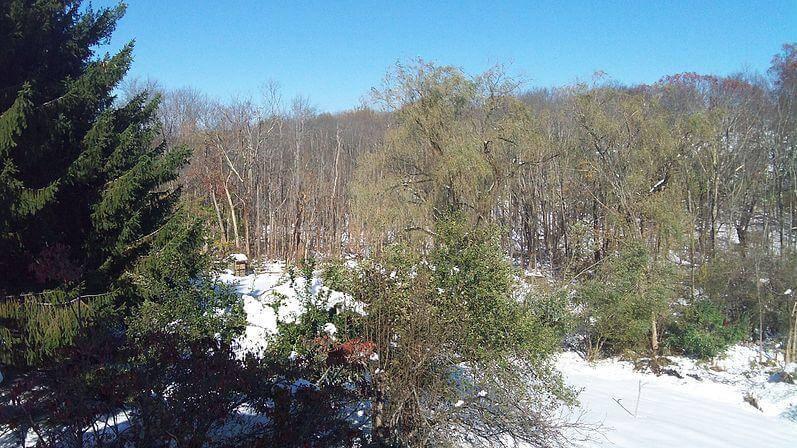 Mount Hunger Waterbury Trail