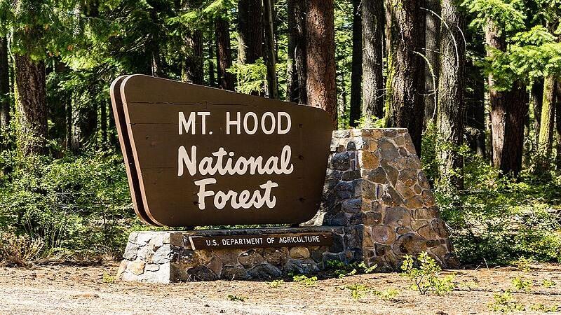 media_gallery-2019-01-24-6-Mt__Hood_National_Forest_Sign_Oregon__29710418676__a9afe3968b8238f83c3ca3bd7a1f1d58.jpg