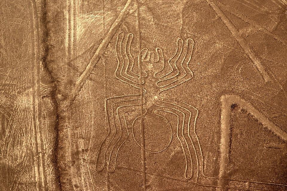 media_gallery-2019-06-20-10-Best_Peru_Scratching_Pictures_Nazca_Plateau_Spider_1177687_f2fd0ba4800be1d4ebfd194f52acc926.jpg