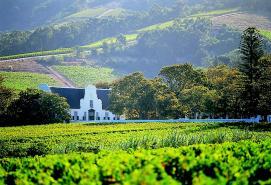 Vintage Sidecar Winelands Experience