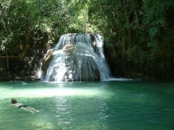 Waterfalls And Coffee Plantation Tour