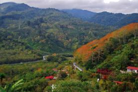Irazu Volcano - Orosi Valley - Lankester Garden