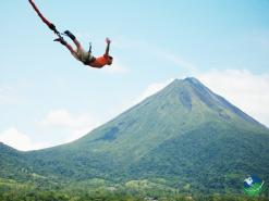 Tropical Bungee Jumping