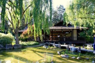 Image of Japanese Friendship Garden