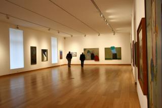 Museo Superior De Bella Artes Evita
