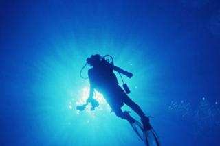 barracuda diving center