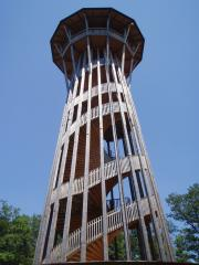 Sauvabelin Tower