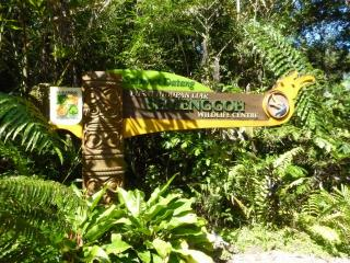 Semenggoh National Park