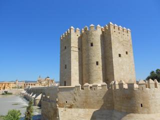 Calahorra Towers
