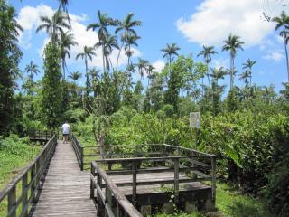 royal palm reserve