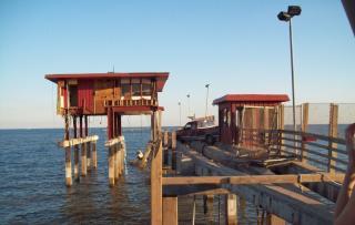 Outdoor activities in galveston triphobo for Galveston fishing pier