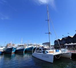 fremantle fishing harbor