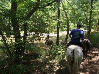 Bear Creek Trail Rides And Stable