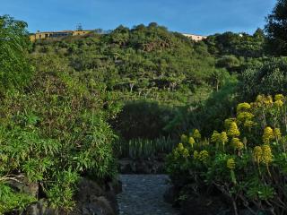 Jardin Botanico Canario Viera Y Clavijo