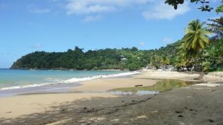 Castara Bay