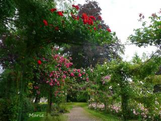 Jardin Public De Bayeux