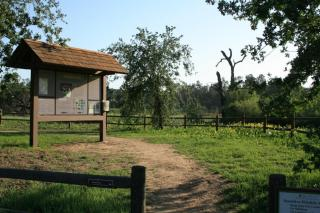 Ojai Meadows Preserve