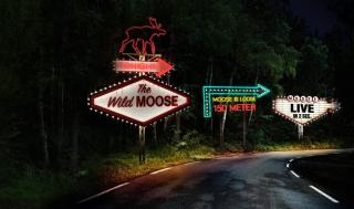 Moose On The Loose Concept Store