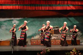 tibetan insititute of performing arts