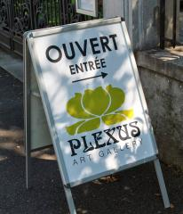 Plexus Art Gallery