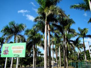 lautoka botanical garden