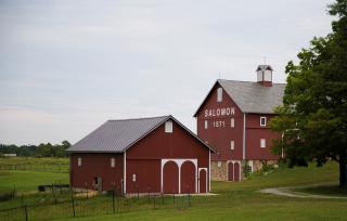 Salomon Farm Park