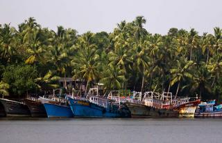Southern Backwaters