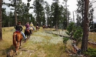 guided horseback trail rides
