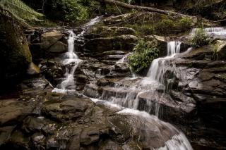 Macquarie Pass National Park