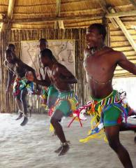 roots of rhythm cultural experience
