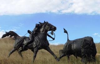 Tatanka- Story Of The Bison
